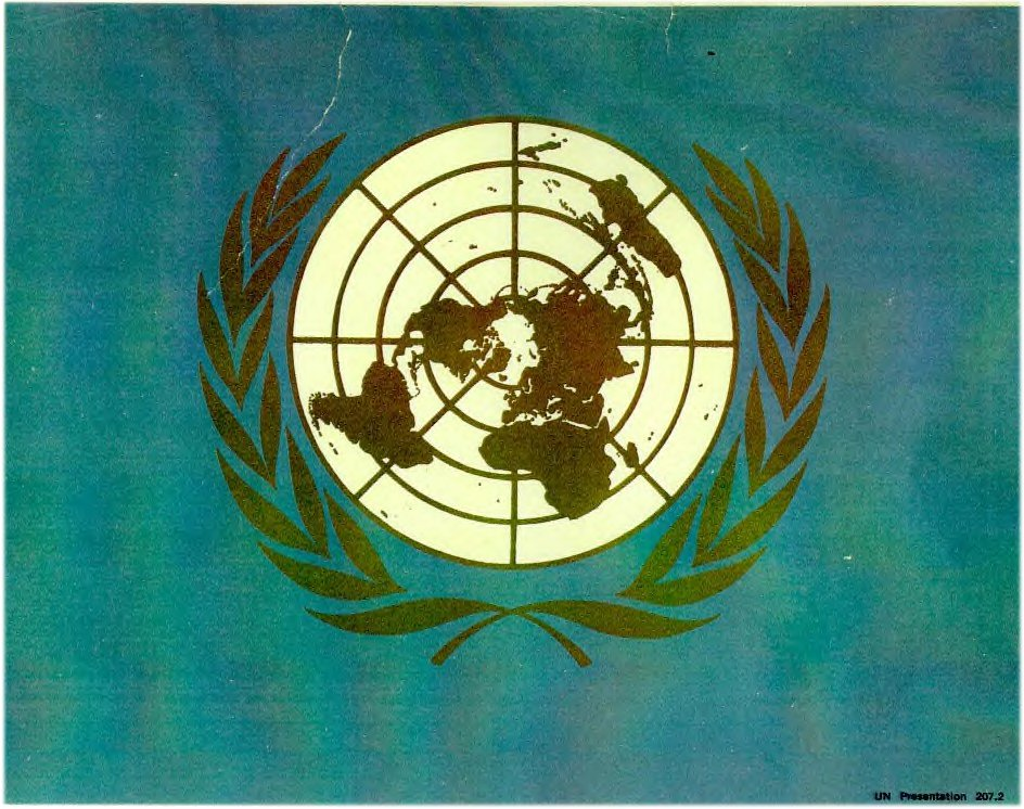 [United Nations Emblem]